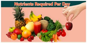 Nutrients Required Per Day