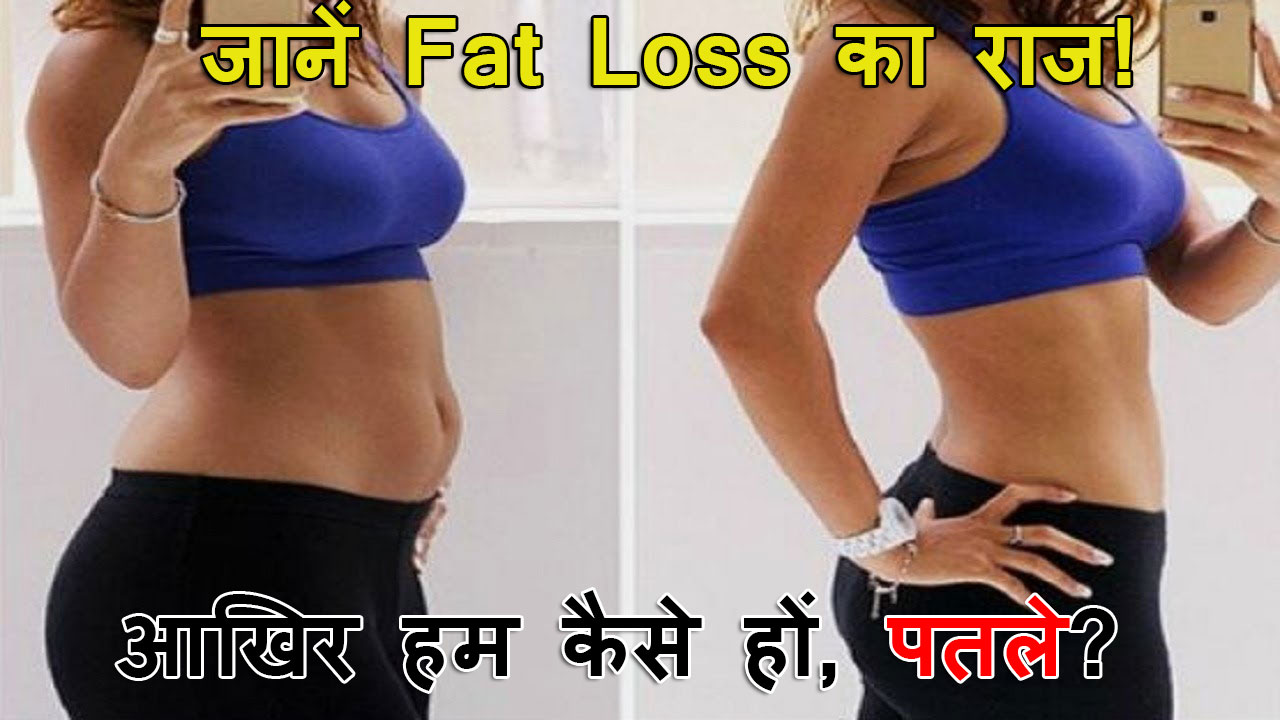 fat-loss-facts