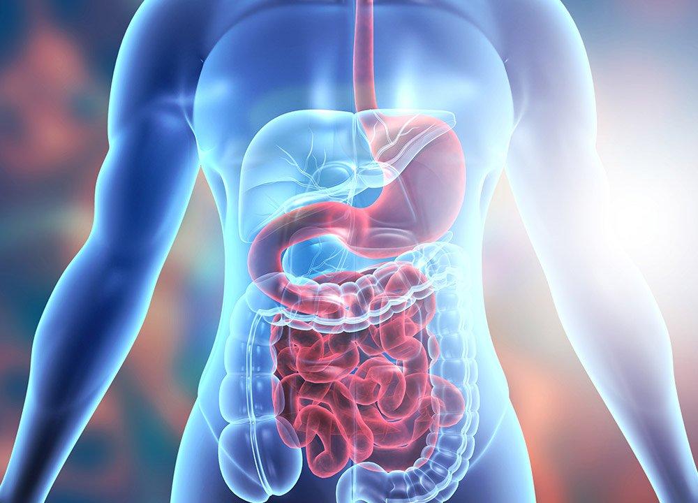 Better digestion