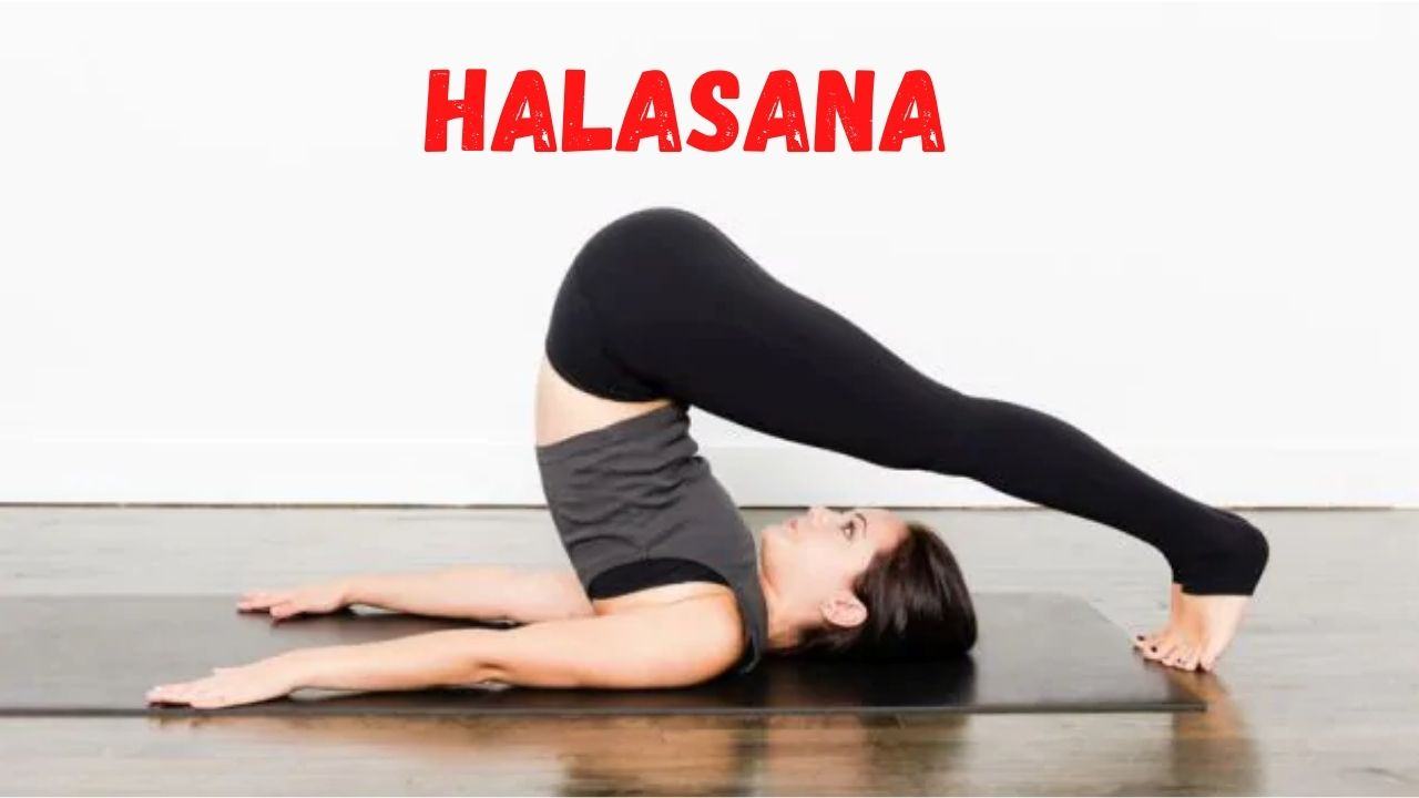 Halaasana